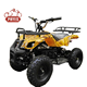 phyes Kids Mini Quad Bike 800W 36V Electric Battery Powered Children Kids ATV