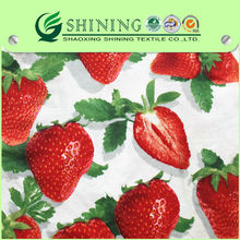 For German cotton ironing blanket fabric