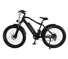 fashion ebike electric bike 350w/500w Mid drive motor with 48v 11AH lithium battery