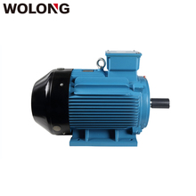 Wolong 6P 3 Phase Induction Electric 4KW AC Motor
