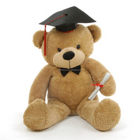 Stuffed Graduation Gift Plush Toys Cheap Giant Teddy Bear