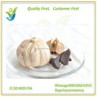 black garlic,organic black garlic