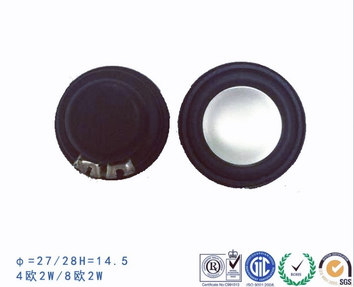 RAYKING factory 27mm / 28mm high-end bass raw speaker , good quality Hi-Fi speaker unit for robot
