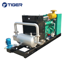 CE approved China best quality natural gas generator 100k with chp cogeneration boiler