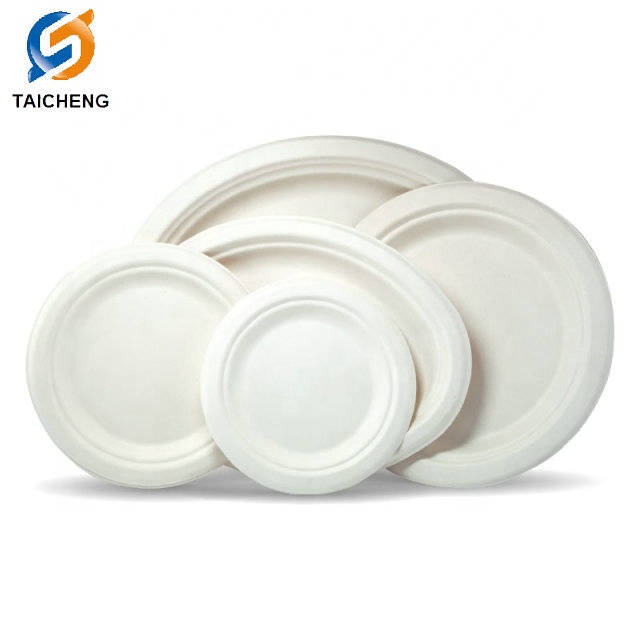 12 <strong>x10</strong> inch Oval plate sugarcane bagasse biodegradable plates