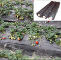 plastic sheeting for garden use to prevent weeds & increase yield