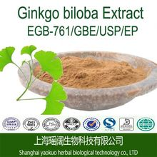 Flavones glycosides 24% ginkgo biloba extract