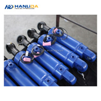 Prefessional and high quality cheap multistage mini excavator hydraulic cylinder