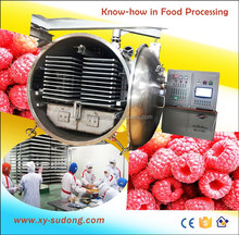 Commercial vacuum freeze drying machine for raspberry, strawberry fruits
