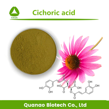 Anti-UV Product Echinacea Purpurea Extract Cichoric Acid 0.5% -20% HPLC Cosmetics Additive