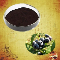 High quality and 100% natural bilberry plants for sale vaccinium macrocarpon bilberry extract powder