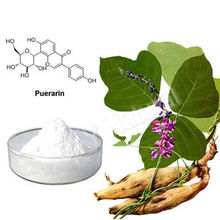 Nature and free pullation pueraria mirifica thailand
