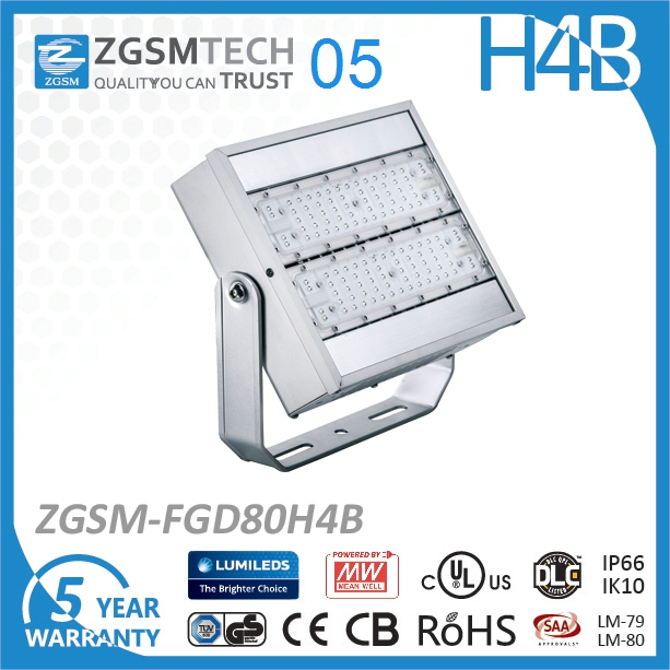 Hot sell 80w led flood light IP66 ZGSM designed flood light led
