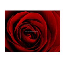 Living Room Wall Decor Red Rose Picture Art Stretched Canvas Printing Ready to Hang
