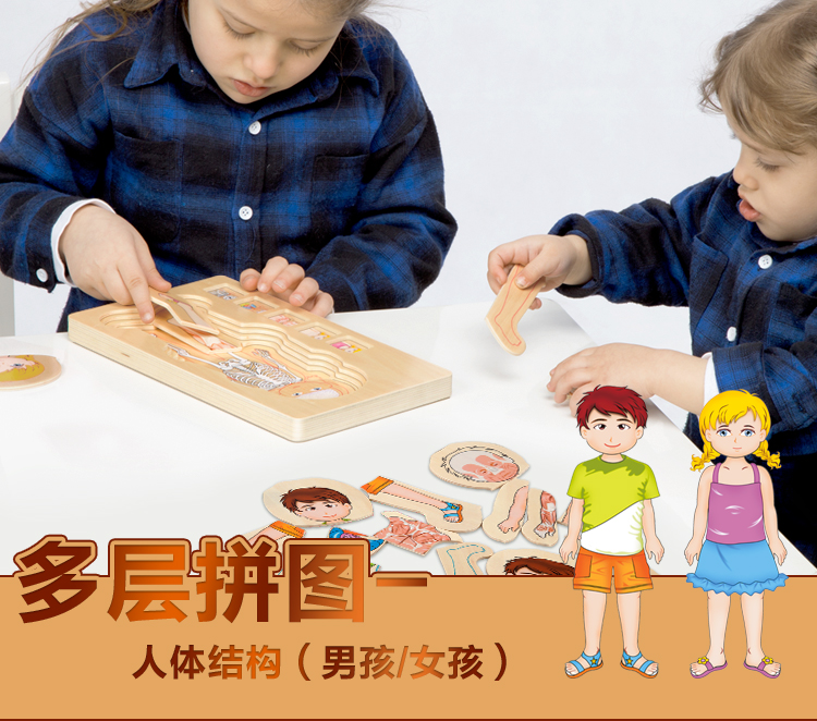 New design educational toys body structure wooden puzzle toy human body cognition puzzle
