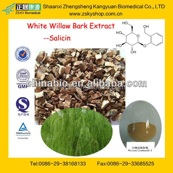 GMP Factory Supply Natural White Willow Bark Extract with 15%-80% Salicin