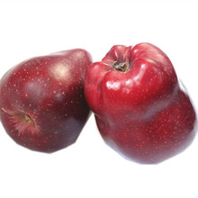 2015 high quality Huaniu apple with good price