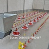 Chicken water line equipment automatic feeder and drinker