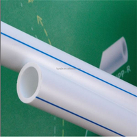 China Professional Supplier High Quality plastic ppr pipe