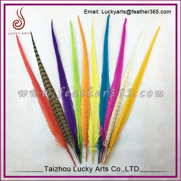 Taizhou lucky arts original natural wholesale reseves tail dyed cheap pheasant feathers