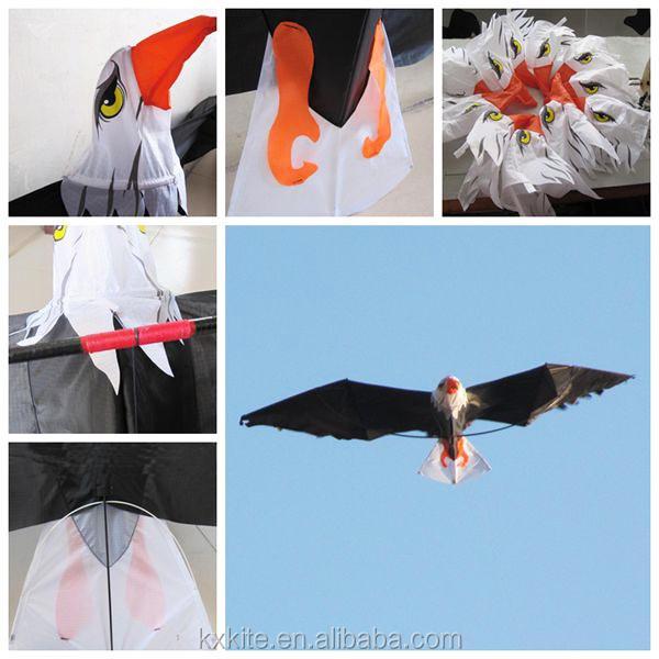 eagle kite p.jpg