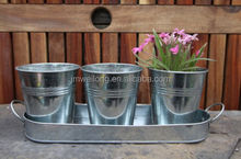 Set of 3 galvanized zinc metal flower pot planter on tray
