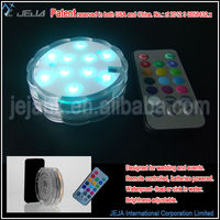 2013 new Christmas ideas colorful led light with remote
