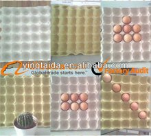 high quality OEM design paper poulp egg tray