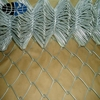 Professional different type galvanized chain link fence