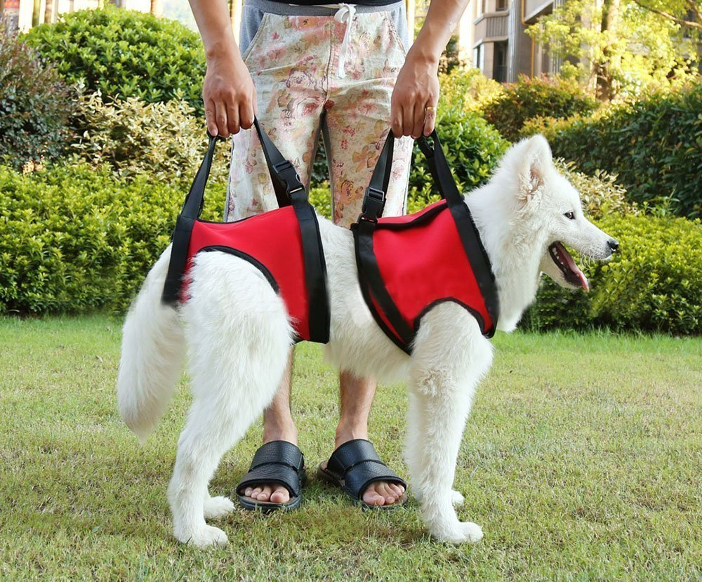 Dog Foreleg and Hind Rear Legs Sling Dog Lift Support Rehabilitation Harness for Elderly, Injured, Disable Pets