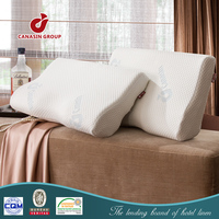 refined memory foam chip down pillow
