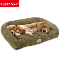 LUCKYSAC Washable luxury Dog bed funny dog sleeping beds