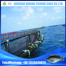 Aquaculture Equipment Fish Farming Cage with HDPE Frame
