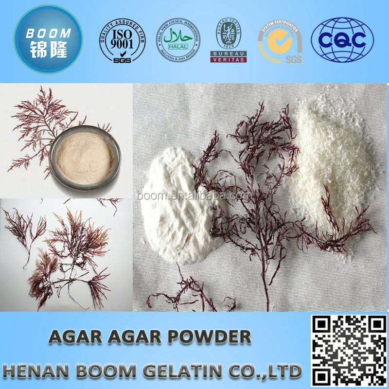 medical agar powder