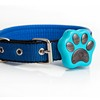 IP66 waterproof anti-lost GSM GPS dog collar cute pet GPS tracker rechargeable
