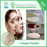 Anti-aging low molecular weight pure marine 100% fish collagen powder