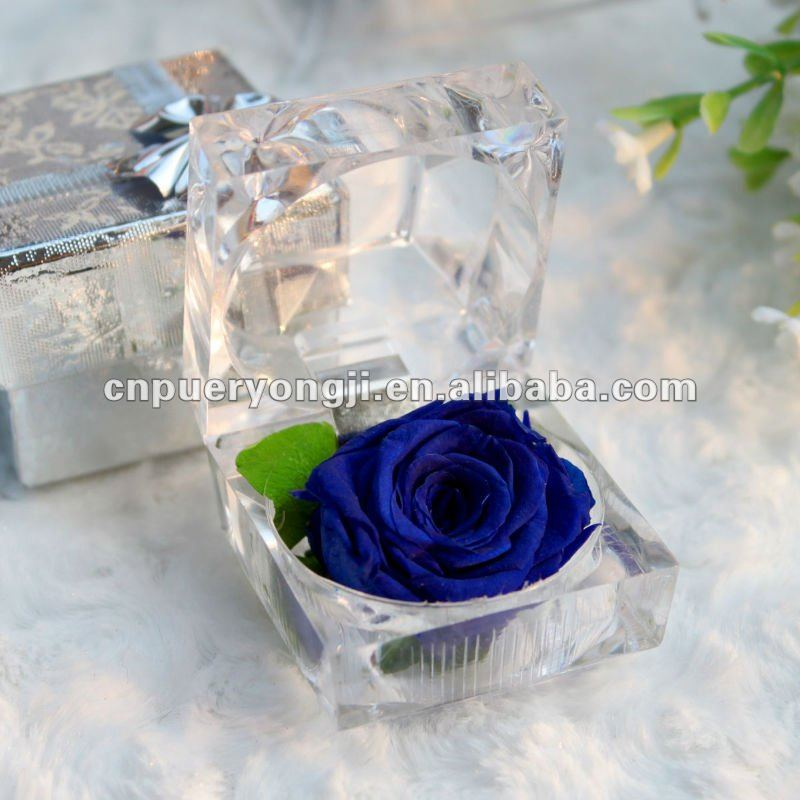 preserved rose flower in glass for gift free sample