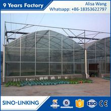 SINOLINK 2017 hot sale hot dipped galvanized with Polycarbonate sheet greenhouse seed planter for seeding