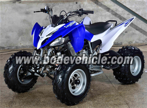raptor design 250cc quad bike for sale buy eec sport. Black Bedroom Furniture Sets. Home Design Ideas