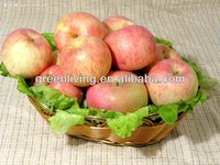 2014 natural fresh fuji apple hot sale ,China