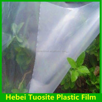 PE Overwintering Film/PE Plastic Agriculture greenhouse covering sheet for sale