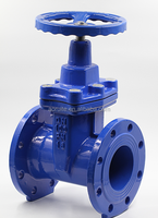 AWWA C509 Resilient Seated Industrial Non Rising Stem Gate valve