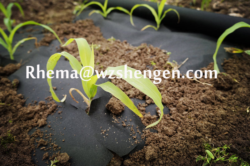 Agriculture use Non woven weed control mat