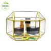 A <<<< perfect for collecting guests' cards or letters, also make a beautiful centerpiece for wedding geometric Glass bottle box