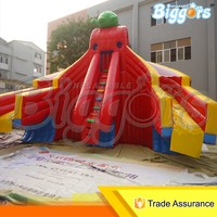 Giant Inflatable Water Slide Water Play Equipment for Amusement Park