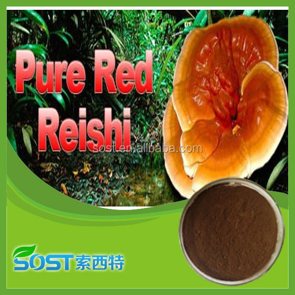 Chinese herb extract 100 ganoderma lucidum extracts