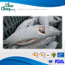 YF001 Frozen Yellowfin (YF) Tuna steak head buy tuna juice with low price