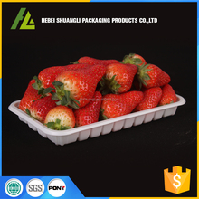 Rectangular disposable plastic strawberry punnet
