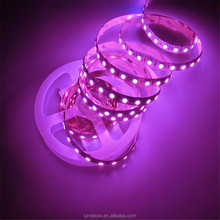 Made in China rgbw led flexible 12v led strip 5050 <strong>rgb</strong> waterproof
