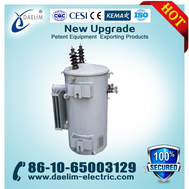 6.3kv 100kva Single Phase Oil Immersed Power Transformers